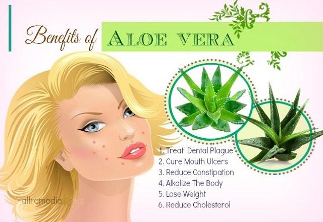 Benefits of Drinking Aloe Vera Gel Drink for Good Health